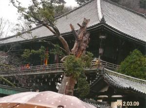 東大寺二月堂(修二会)お水取りの会場 ここで僧侶により松明が運ばれる