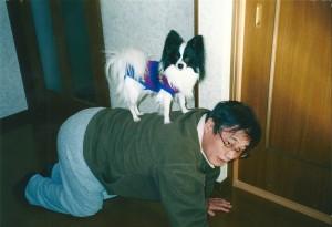 私の二男ラッキー1歳 偉そうにしている。15年前は若くて凛々しい