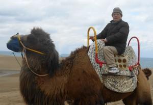 鳥取砂丘でラクダに乗った ラクダは馬よりも相当大きい。揺れも大きい 写真をクリックすると拡大・鮮明になる